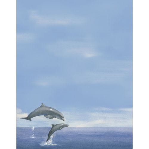 972808 - Two Dolphins