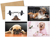 Doggy Thoughts Multi-pack note card set 20CT