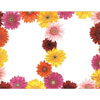 Gerbera Daisies 2 Up Invite